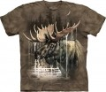 Moose Forest - T-shirt The Mountain