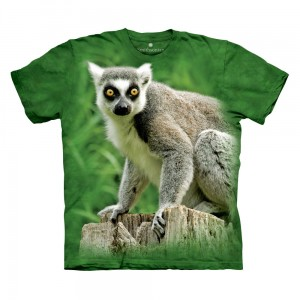 Ring Tailed Lemur - T-shirt The Mountain OL