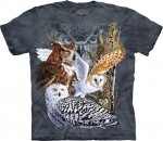 Find 11 Owls - T-shirt The Mountain